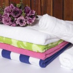 Premium Cotton Towel Binh Anh